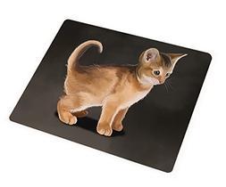 Abyssinian Kitten Cat Art Portrait Print Woven Throw Sherpa