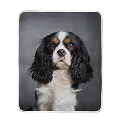 My Daily Cavalier King Charles Spaniel Dog Throw Blanket Sof