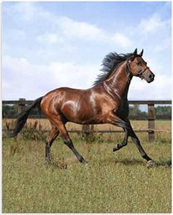 Instinkt Naturel Horse Throw Blanket, Photoreal Micro Mink B
