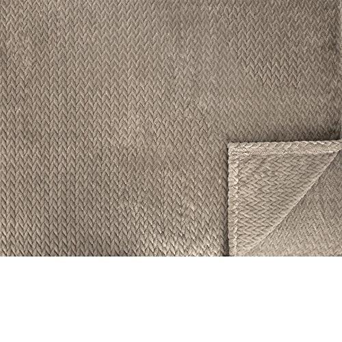Taupe Sofa, Throw Cozy Microfiber, Reversible Blanket All Season 50 x