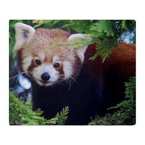 red panda soft fleece throw