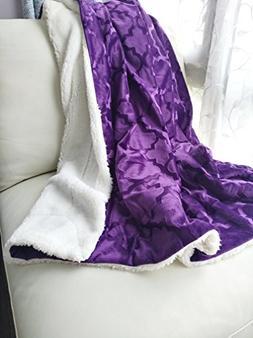 Ashviee Luxurious Microplush Fuzzy Throw Blankets Super Warm